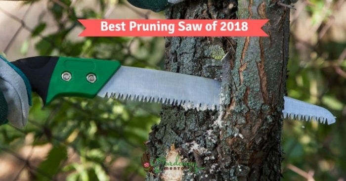 best pruning saw of 2018