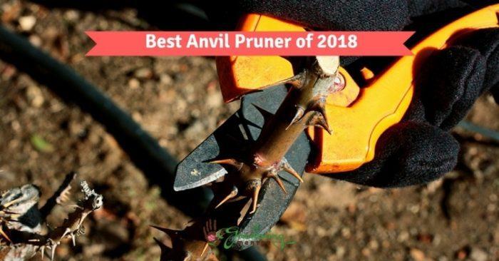 Best anvil pruner of 2018