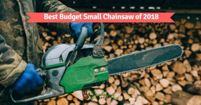 Best budget small chainsaw of 2018