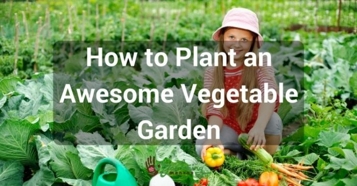 Plant your vegetable garden