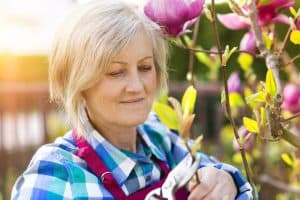 Bypass pruners for arthritis