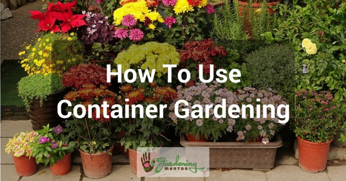 How to use container gardening