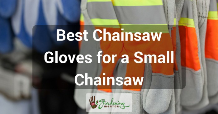 Best chainsaw gloves for a small chainsaw