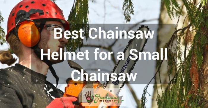 Best chainsaw helmet for a small chainsaw