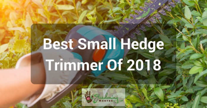 Best Small Hedge Trimmer of 2018