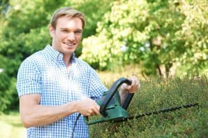lightweight hedge trimmer