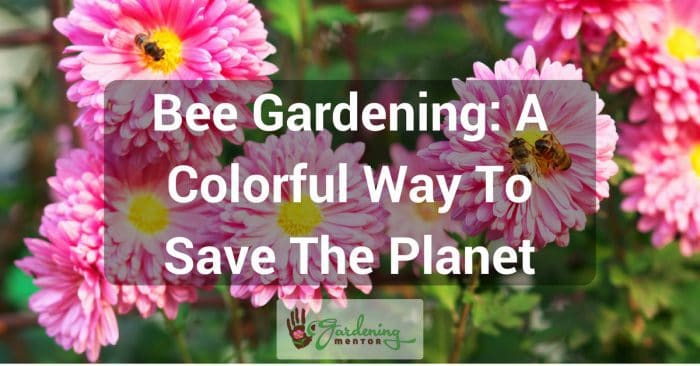 Bee Gardening: A Colorful Way To Save The Planet