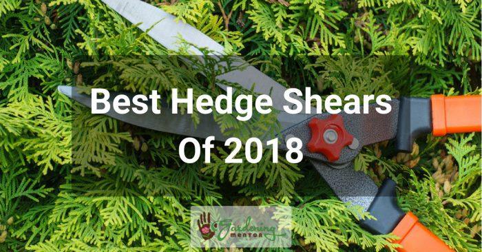 Best Hedge Shears of 2018