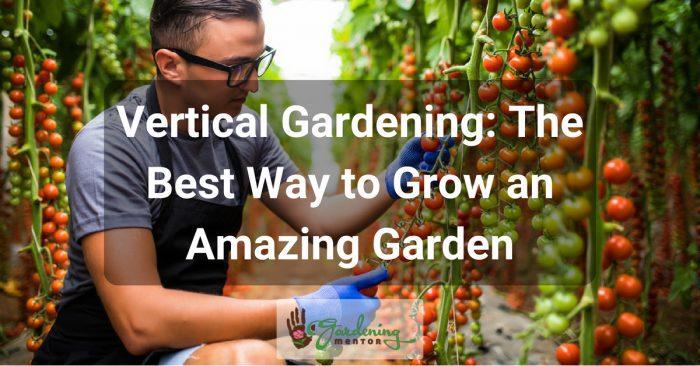 Vertical Gardening: The Best Way to Grow an Amazing Garden