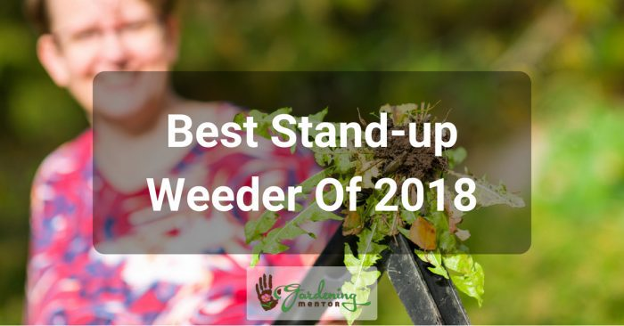 What is the Best Stand-up Weeder of 2018