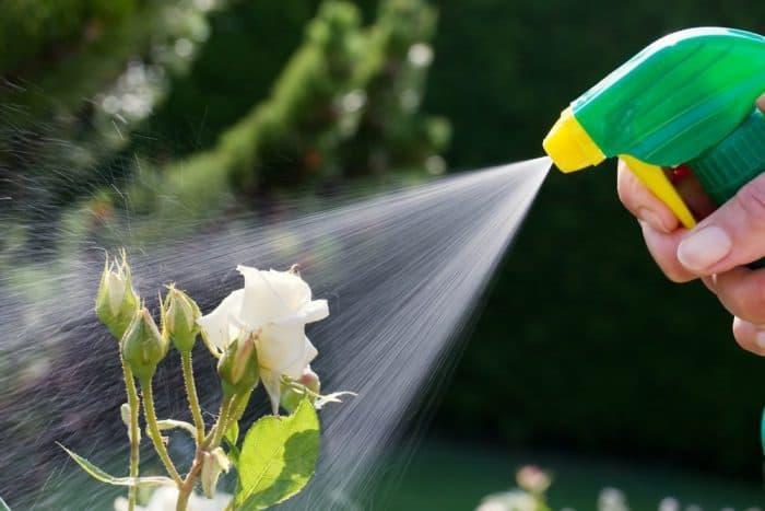 Vertical garden pest control