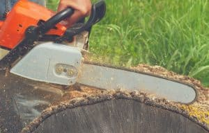 man cutting trunk with cordless chainsaw