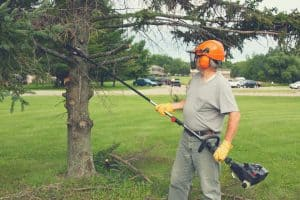 man cutting branches with a cordless pole saw