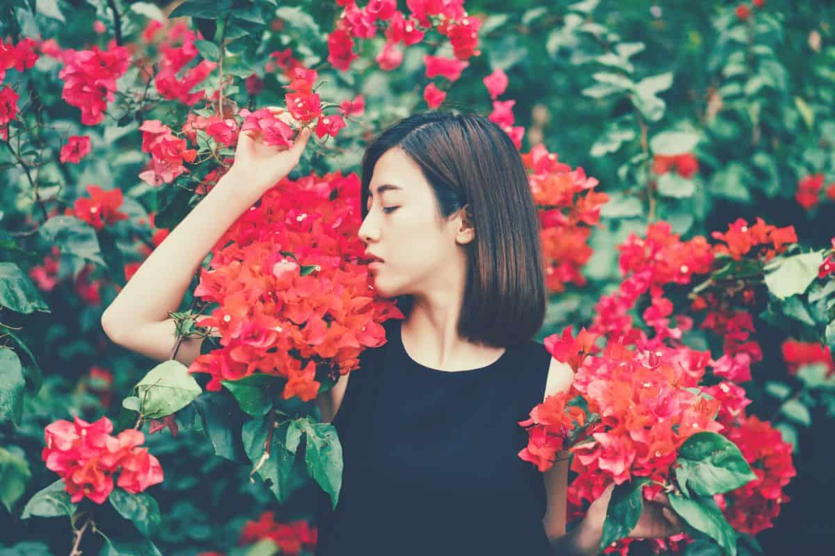 woman in garden holding red flowers