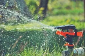 motion activated sprinkler in yard