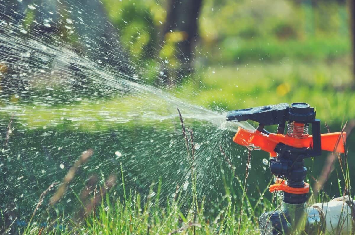 motion activated sprinkler in yard