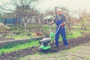gardener using small rototiller in garden