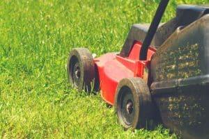 push lawn sweeper