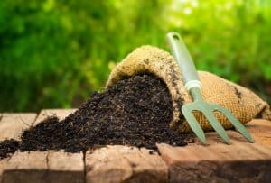 bone meal for gardening