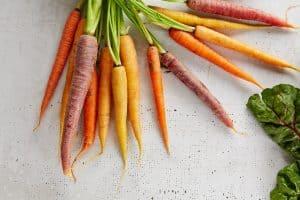different varieties of carrots